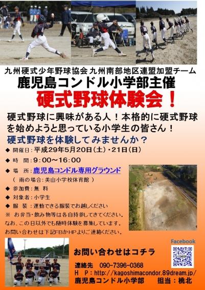 硬式野球体験会 開催!!